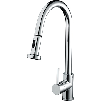 Professional Sink Mixer with Pull Out Spray